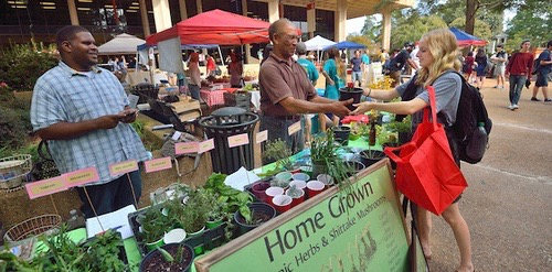Ole Miss Market Days Bring Local Food to Campus